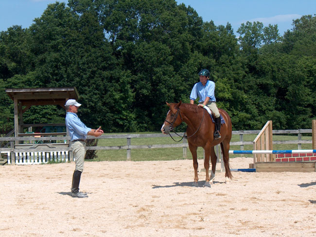 private horse insurance